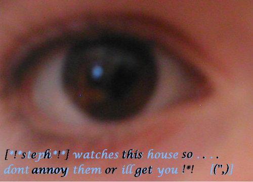 <img:http://www.elfpack.com/img/image/31721_1134165517.jpg>
