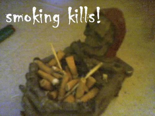<img:http://www.elfpack.com/img/photo/15423_1136733947.jpg>