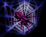 <img:http://www.elfpack.com/stuff/72NeonWeb%26SpiderRev.psd.jpg>