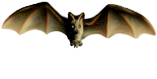 <img:http://www.elfpack.com/stuff/Bat_center_ltNlow.png>