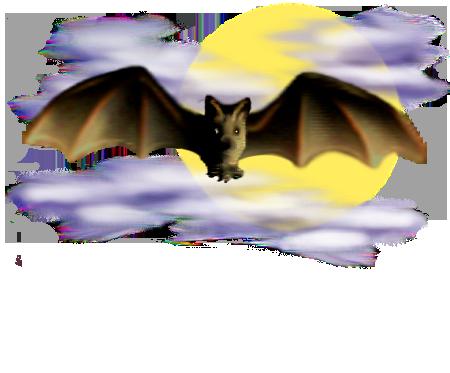 <img:http://www.elfpack.com/stuff/Bat_center_nightsky.png>