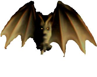 <img:http://www.elfpack.com/stuff/Bat_readytoland.png>