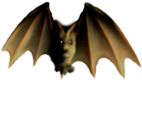 <img:http://www.elfpack.com/stuff/Bat_readytolandMED.png>