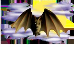 <img:http://www.elfpack.com/stuff/Bat_readytoland_nightskyMED.png>
