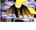 <img:http://www.elfpack.com/stuff/Bat_readytoland_nightskySM.png>