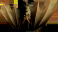 <img:http://www.elfpack.com/stuff/Bat_upsidedownMED.png>