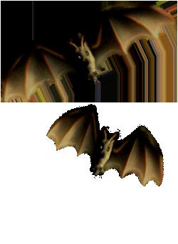 <img:http://www.elfpack.com/stuff/Bats-2leftNright.png>