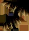 <img:http://www.elfpack.com/stuff/Bats-2leftNrightSM_rev.png>