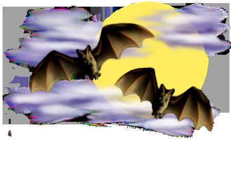 <img:http://www.elfpack.com/stuff/Bats-2leftNright_nightsky.png>
