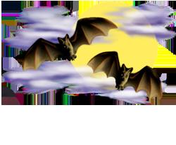 <img:http://www.elfpack.com/stuff/Bats-2leftNright_nightskyMED.png>