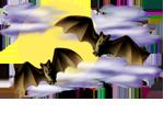 <img:http://www.elfpack.com/stuff/Bats-2leftNright_nightskySM_rev.png>