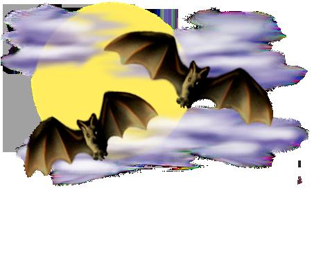 <img:http://www.elfpack.com/stuff/Bats-2leftNright_nightsky_rev.png>