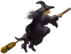 <img:http://www.elfpack.com/stuff/Broom-WitchSM.png>