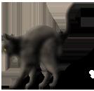 <img:http://www.elfpack.com/stuff/CatReady_left.png>