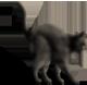 <img:http://www.elfpack.com/stuff/CatReady_rightSM.png>