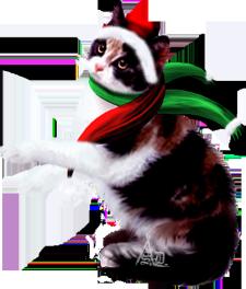 <img225*0:http://www.elfpack.com/stuff/ChristmasCalicoByArtsieladie2013rev.png>