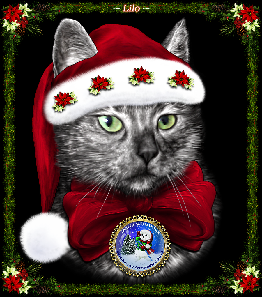 <img:http://www.elfpack.com/stuff/ChristmasGreetingsLiloByArtsieladie2013-12-14_900x1020.png>