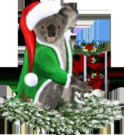 <img250*0:http://www.elfpack.com/stuff/ChristmasKoalaByArtsieladie2013.png>