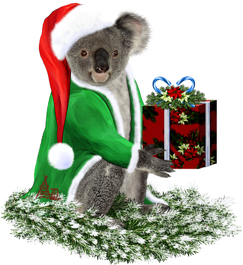<img:http://www.elfpack.com/stuff/ChristmasKoalaSnow1-ByArtsieladie2013-11-30_500x547.png>