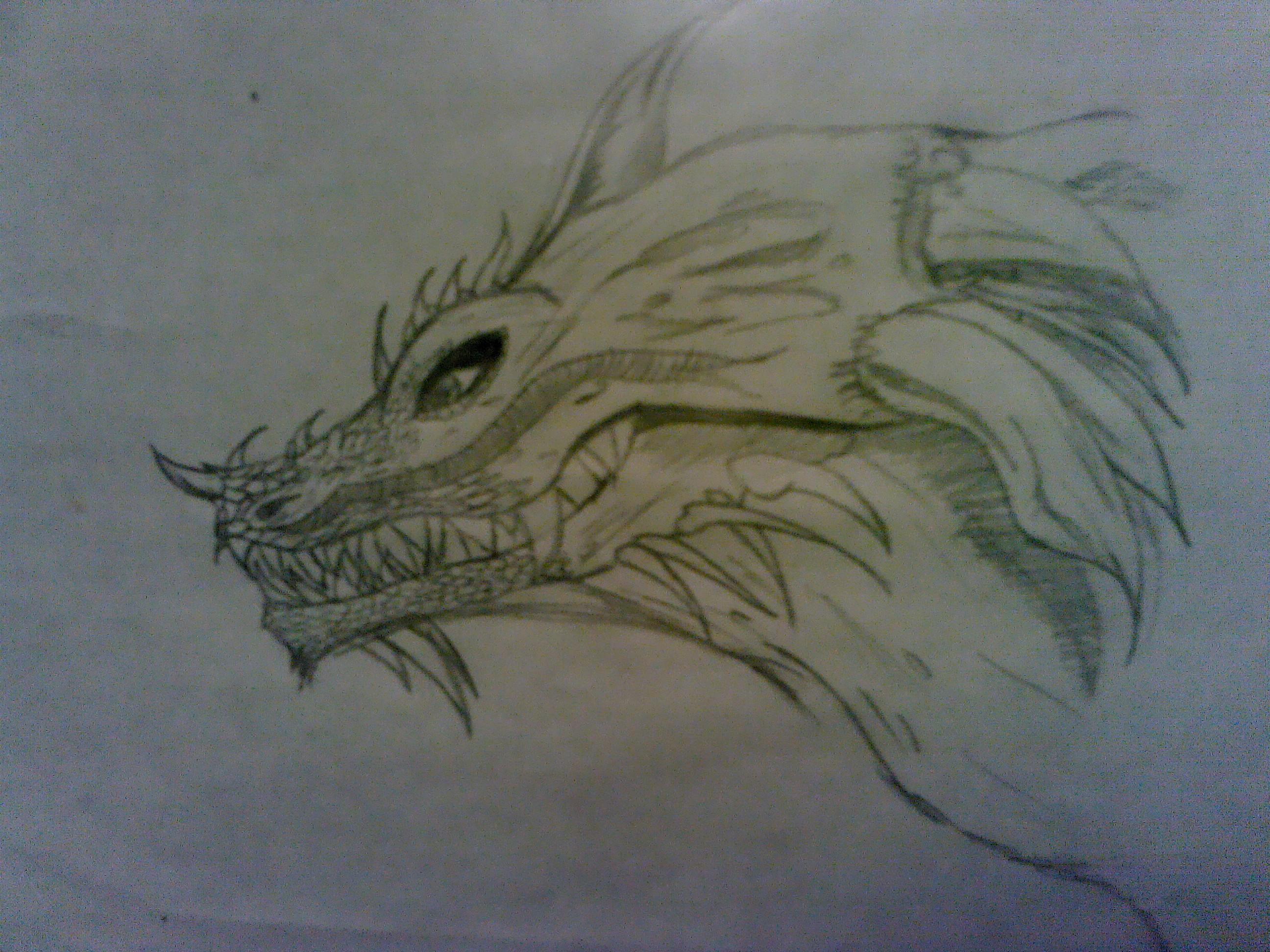 <img500*0:http://www.elfpack.com/stuff/Dragon.jpg>