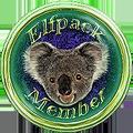 <img:http://www.elfpack.com/stuff/EP-MemberKoalaButtonColoured9-ByArtsieladie2013-04-09_120x120.png>