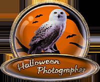 <img:http://www.elfpack.com/stuff/ElfpackHalloweenPhotographerBadge-1stPlaceByArtsieladie2013-11-31_200x165.png>