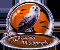 <img:http://www.elfpack.com/stuff/ElfpackHalloweenPhotographerBadge-2ndPlaceByArtsieladie2013-11-31_200x165.png>