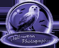 <img:http://www.elfpack.com/stuff/ElfpackHalloweenPhotographerBadge-ParticipantByArtsieladie2013-11-31_200x165.png>