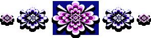 <img:http://www.elfpack.com/stuff/GraphicFloralsInvPinkBl295X75_test.png>
