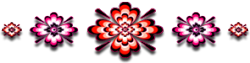 <img250*0:http://www.elfpack.com/stuff/GraphicFloralsOr-RedPink295X75_test.png>