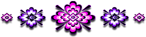 <img:http://www.elfpack.com/stuff/GraphicFloralsPinkPurp295X75_test2.png>