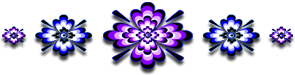<img:http://www.elfpack.com/stuff/GraphicFloralsPurpBl295X75_test.png>