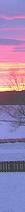 <img:http://www.elfpack.com/stuff/Hedda-sky2Border_RH_25x212.png>