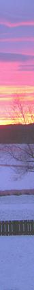 <img:http://www.elfpack.com/stuff/Hedda-sky2Border_RH_50x423.png>