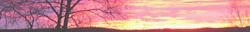 <img:http://www.elfpack.com/stuff/Hedda-sky2Divider_LH_250.png>