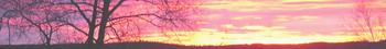 <img:http://www.elfpack.com/stuff/Hedda-sky2Divider_LH_350.png>
