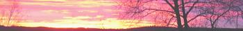 <img:http://www.elfpack.com/stuff/Hedda-sky2Divider_RH_350.png>