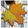<img:http://www.elfpack.com/stuff/Leaf-GrnYelOr.png>