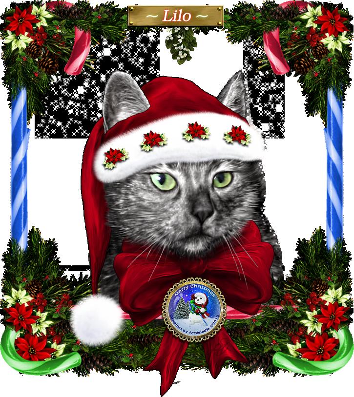 <img:http://www.elfpack.com/stuff/MerryChristmasLilo2ByArtsieladie2013-12-11_725x814.png>