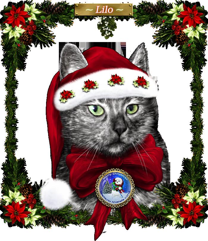 <img:http://www.elfpack.com/stuff/MerryChristmasLiloByArtsieladie2013-12-11_700x814.png>
