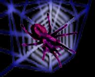 <img:http://www.elfpack.com/stuff/NeonWeb%26SpiderRev.psd.jpg>