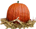 <img:http://www.elfpack.com/stuff/Pumpkin-realSM.png>