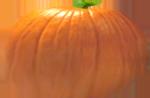 <img:http://www.elfpack.com/stuff/PumpkinPatch_10Med.png>