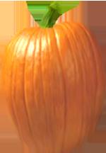 <img:http://www.elfpack.com/stuff/PumpkinPatch_2Med.png>