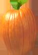 <img:http://www.elfpack.com/stuff/PumpkinPatch_2SM.png>