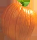 <img:http://www.elfpack.com/stuff/PumpkinPatch_6Med.png>
