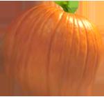<img:http://www.elfpack.com/stuff/PumpkinPatch_7Med.png>