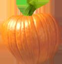 <img:http://www.elfpack.com/stuff/PumpkinPatch_8Med.png>