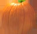 <img:http://www.elfpack.com/stuff/PumpkinPatch_9Med.png>