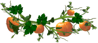 <img:http://www.elfpack.com/stuff/PumpkinVineDiv_5pum.png>